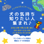 まりちゃんインスタライブ
